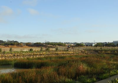 The Dunes Wetlands